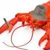Воскресный HMG - 17.06.17 | Ценный груз + Alarm - последнее сообщение от leery_lobster_