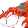 [HMG] Next step Guantanamo - последнее сообщение от leery_lobster_